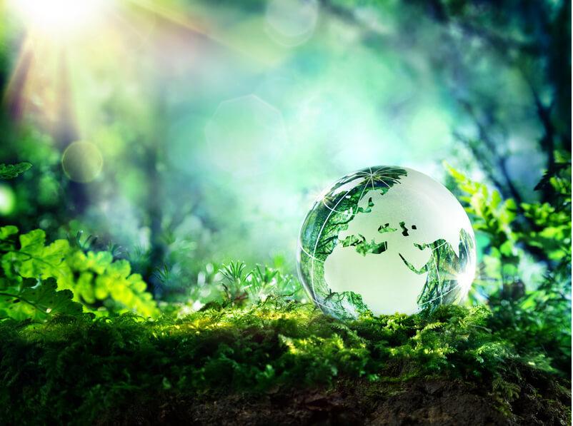 globe on moss in a forest - Europe - environment concept, Foto: Romolo Tavani, fotolia.com