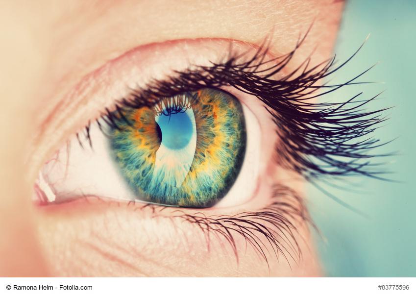 eye, Foto: Ramona Heim